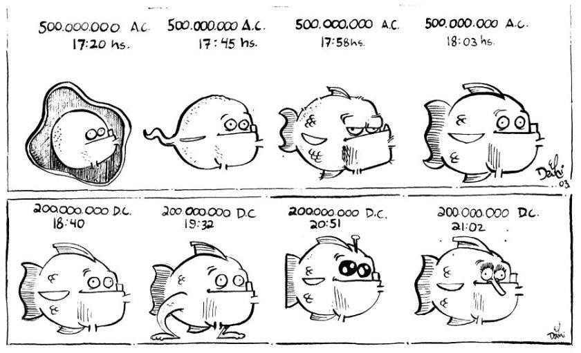 Darwin Explica.